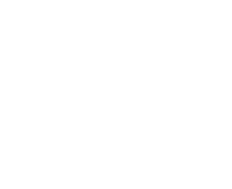 Rye School of English Logo
